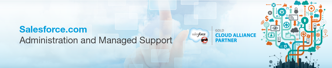 Salesforce.com Administration and Managed Support