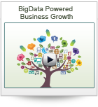 BigData Powered Business Growth